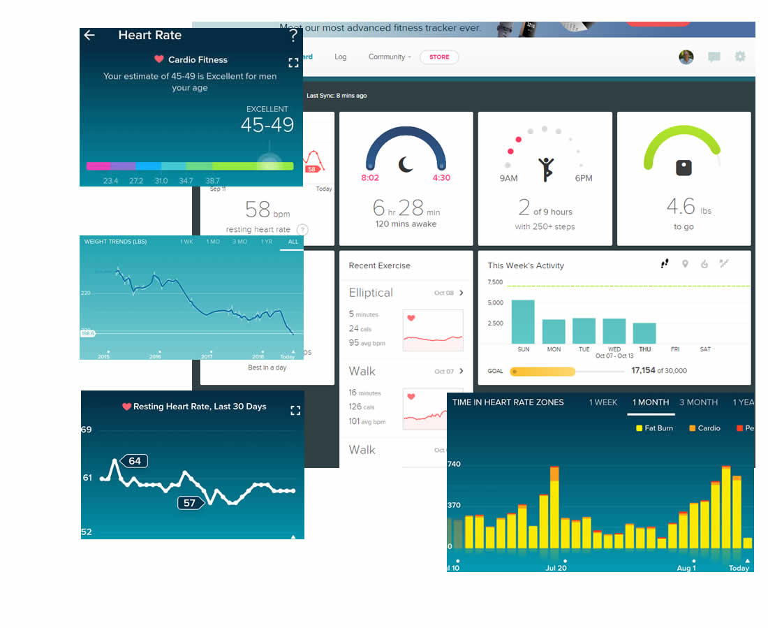 fitbit charting your health